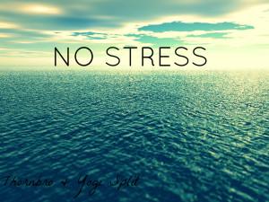 Una cultura anti stress